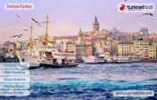 Türkiye Domain Tescil